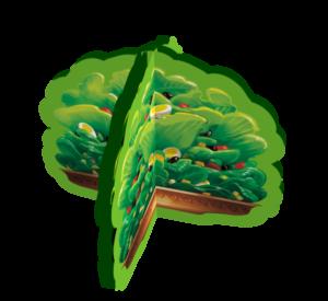 salade_00000